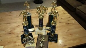Lot of Soccer Trophies
