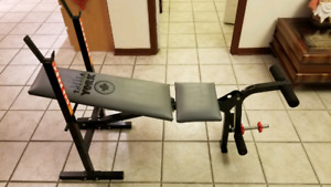 Adjustable exercise - workout bench