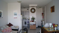 Renovated bright and clean 1½ apartment for sublet immediately
