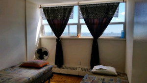 Shared room for Gujarati female in Scarborough