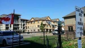 Brand New Townhouse For Rent.  36 Southshore Cres. Stoney Creek