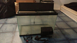 Fish tank and filter 100$