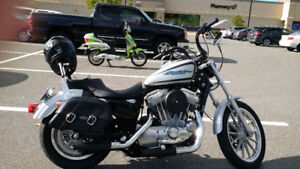 2005 Harley Sportster CUSTOM - Low KMs