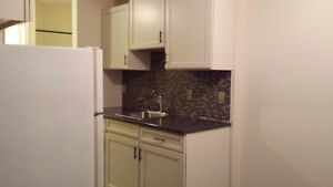 Available Now - i Bedroom Renovated Apt in Adult Building
