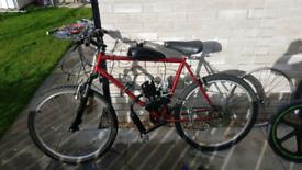 Motorised mountain bike