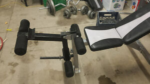 Olympic Bench fully adjustable +weights +bars Windsor Region Ontario image 4