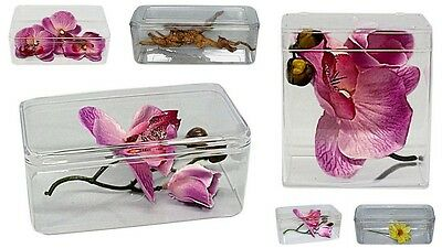 Tarantula,Spider,Insect ,cage, tank.Plastic Display box