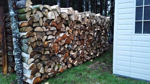 Firewood For Sale By Half Cord Ranks