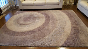 Area Rug in Great Condition