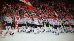 2010 Olimpic hockey picture