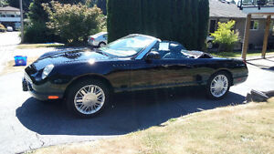 2002 Ford Thunderbird - 37,000 Kilometers (23,000 miles)