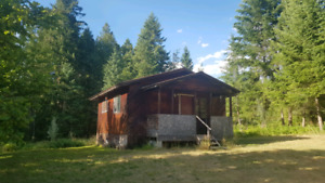Slocan valley 1 bedroom house for rent available nov 1st