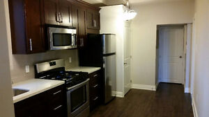 Brand New Units...All High End! 2 Bedroom(2nd) & 1 Bed+Den(Main