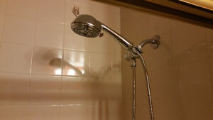 Large, Bright Room for rent in house with private bath Kitchener / Waterloo Kitchener Area image 5