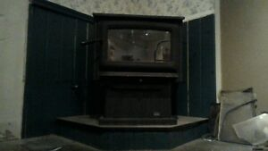 Wood stove Pacific Energy Summit