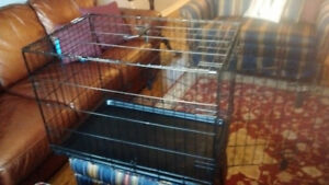 Medium Size Dog Crate For Sale - Excellent Condition