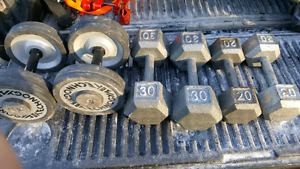 Weight bench, weights, and dumbbells