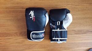 Hayabusa Ikusa Pro 16 oz. Sparring Gloves