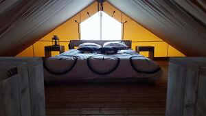Glamping lodge, safari tent, barnwood interior, trappers tent