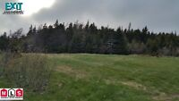 12 Acre Land on Sale in Shoe Cove/ Pouch Cove!!