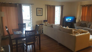 1 Bedroom Room in a 2 Bedroom Luxury Apartment for Rent. March 1