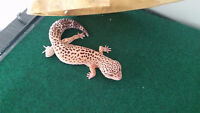 Two Leopard Geckos with tank/accessories