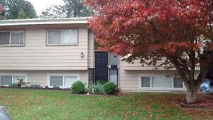 $1600 3 bdrm/ plus den,1 bath, upper level house avail Dec 15