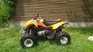 2012 Arctic Cat DVX 300