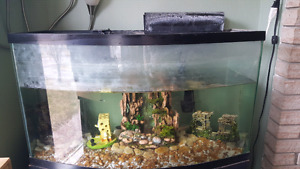 Axolotle and tank with stand