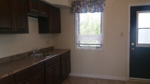 1 BEDROOM APARTMENT AVAILABLE DEC 1, 2016
