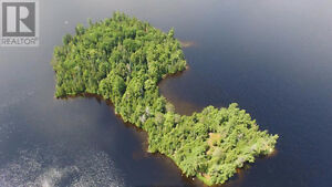 Private island on mostly crown land lake Kawartha Lakes Peterborough Area image 3