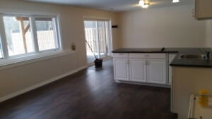 Brand new 2 Bedroom Basement Apartment ALL INCLUSIVE