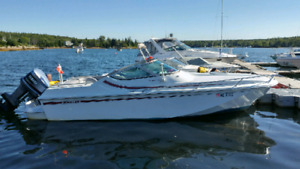 Boston whaler temptation 2000