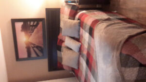 Bedspread, large wall picture and all cushions in photo