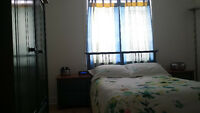 ROOM TO RENT IN MODER 4 1/2