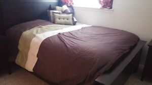 Queen Size Bedspread and 4 Decorative pillows