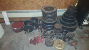 Weights weider and York brand  and bench and heavy bag