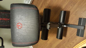 Personal home gym!! Take it apart and it's yours!! St. John's Newfoundland image 5