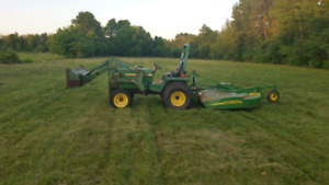 Long Grass overgrowth cutting weed cutting bush hog service