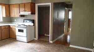 Large 2 bedroom apartment for $700/mth +