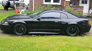 1999 Ford Mustang Gt cobra package)