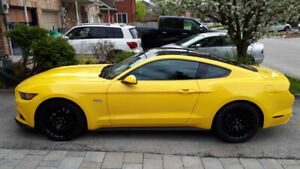 Lease take over --- Mustang GT 2017