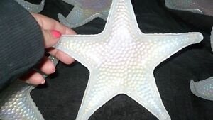 """GORGEOUS SET OF 8 MOTHER OF PEARL GLASS """"STAR FISH PLATES"""" Kitchener / Waterloo Kitchener Area image 2"""
