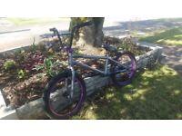 Mongoose Scan R70 BMX Bike *Excellent Condition*