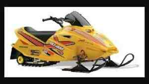 Ski doo mini z rev