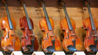 Professional Violin Lessons for All Levels