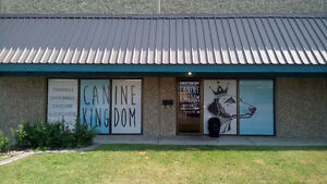 Canine Kingdom Daycare & Boarding