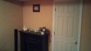Private room for rent in Basement