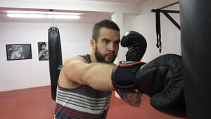 Develop your Boxing/Striking skills!