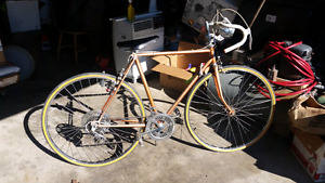 Rare Vintage Road / race bike in pristine condition